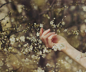 flowers, hand, and spring image