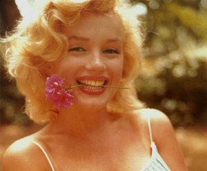 Marilyn Monroe, flowers, and marilyn image