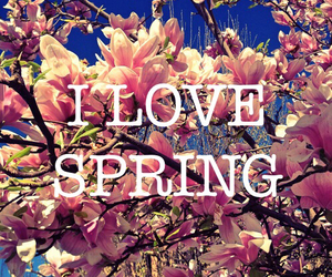 spring and love image
