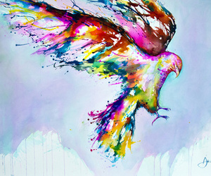 bird, colors, and drawing image