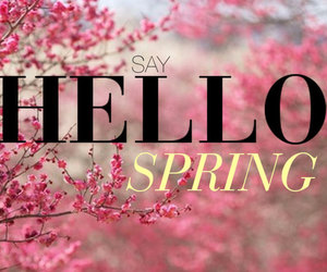 hello, pink, and spring image