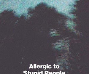 people, stupid, and allergic image