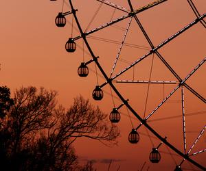 sunset, photography, and ferris wheel image