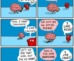 heart, brain, and funny image