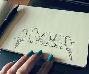 bird, drawing, and art image