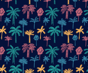 palm trees and wallpaper image