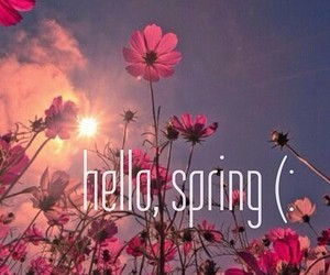 spring, hello, and flowers image