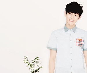 chanyeol, exo, and ivy club image