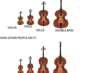 violin, cello, and double bass image