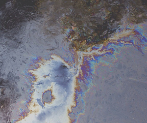 oil, water, and tornasol image