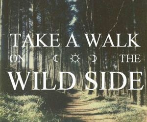 wild, quote, and wild side image