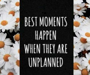 background, flower, and moments image