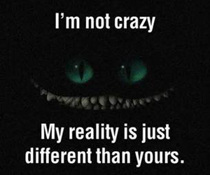 crazy, reality, and quote image