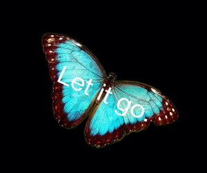 butterfly, it, and go image