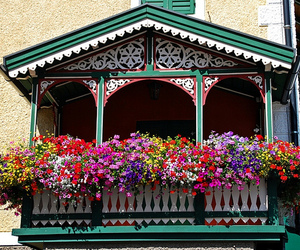 balconies, balcony, and flowers image