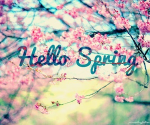 flowers, believe, and spring image