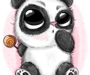panda, animal, and sweet image