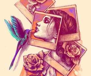 bird, art, and rose image