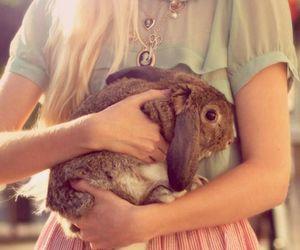 girl, fashion, and bunny image