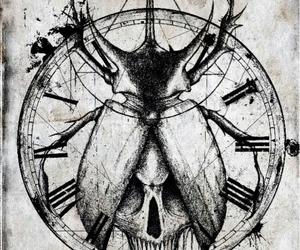 art, beetle, and skull image