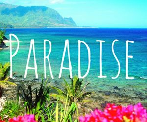 paradise, flowers, and summer image