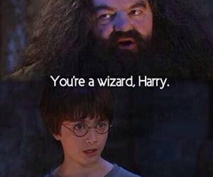 harry potter, wizard, and hagrid image