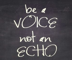 echo, life, and voice image