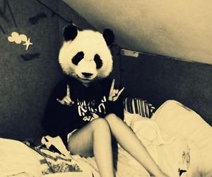 girl, panda, and hipster image