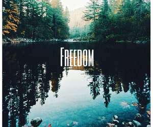 freedom and nature image