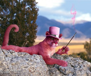 pink panther and real image