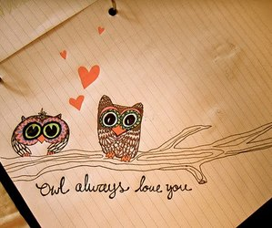 beautiful, drawing, and owl image