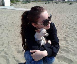 beautiful, cute dog, and sun image