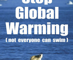 fight, global warming, and Polar Bear image