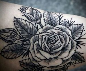 awesome, flower, and roses image