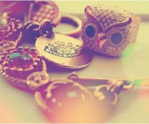 *-*, owl, and accessories image