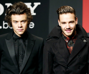 Harry Styles, 1d, and liam payne image