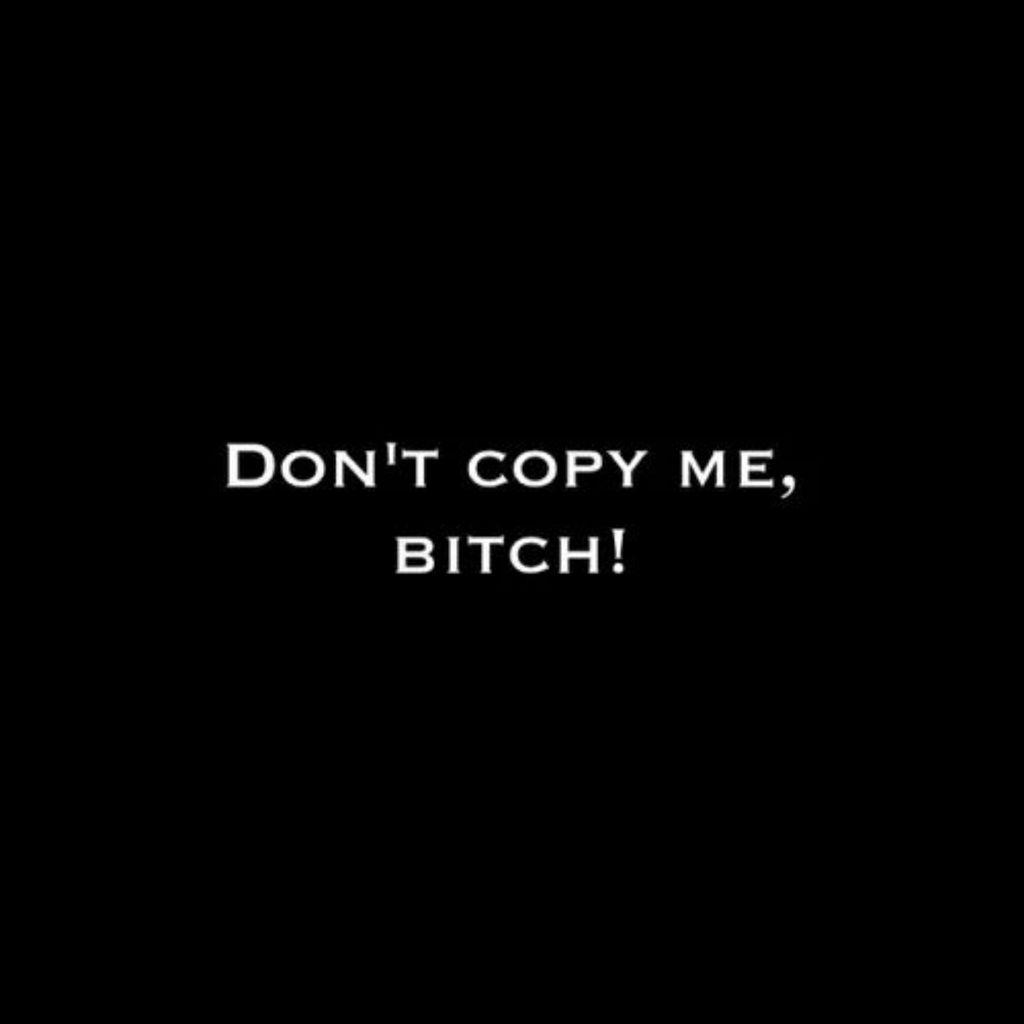 bitch, copy, and copycat image