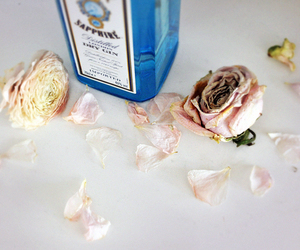 bottle, photography, and pink roses image
