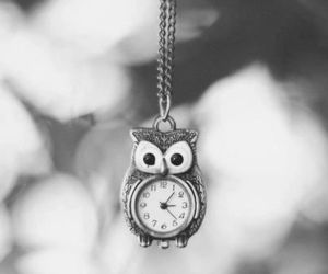 amazing, black and white, and owl image