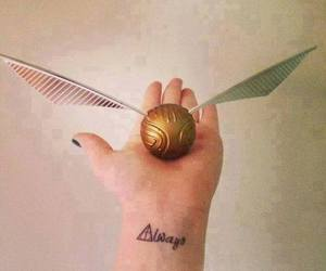 harry potter, always, and hp image