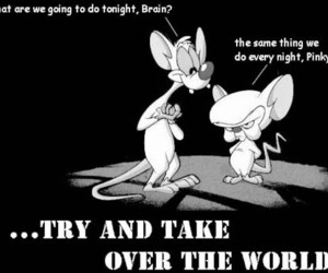 world, pinky and the brain, and brain image