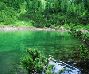 kosovo, nature, and rugove image