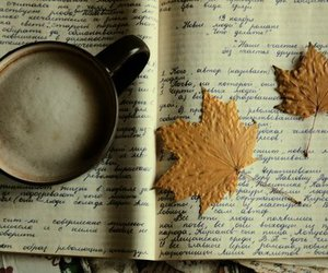 coffee, book, and leaves image