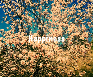 flowers, spring, and happiness image