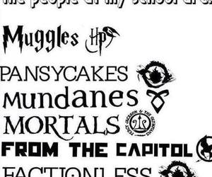 books, divergent, and harry potter image