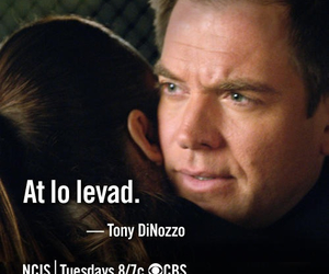 ncis and at lo levad image