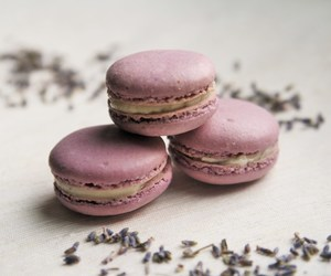 buttercream, lavender, and macarons image