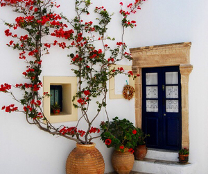 flowers, Greece, and travel image