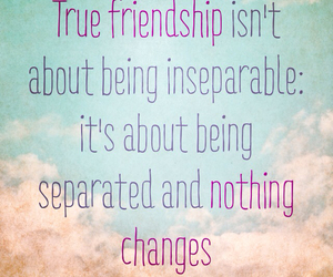 friendship, inseparable, and friends image