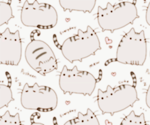 cat, header, and cute image